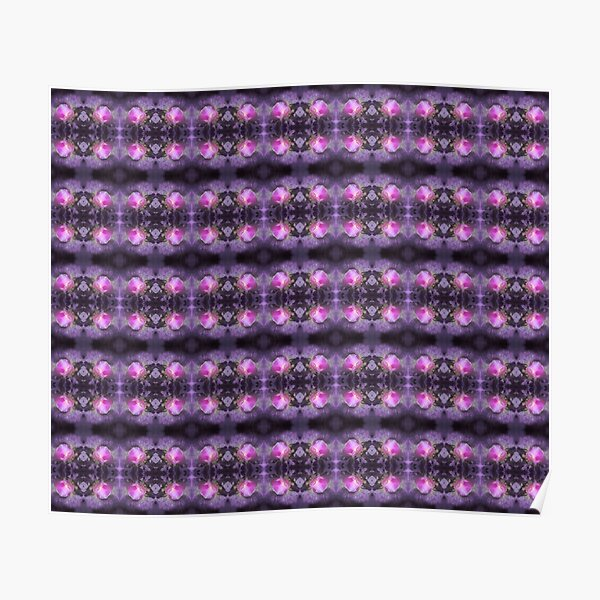 Old fashioned pink rose, purple texture pattern Poster
