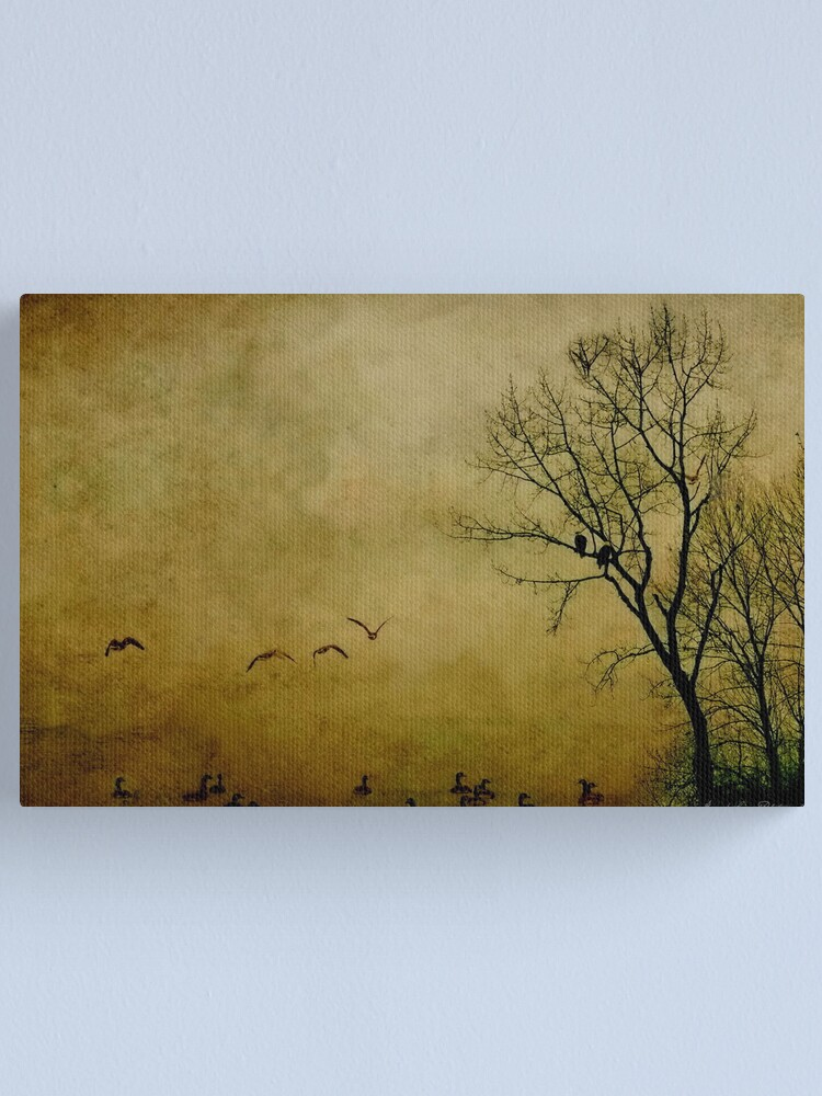 Alternate view of Resting Point Canvas Print