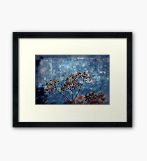 Seasons Greeting Framed Print