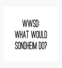 What Would Sondheim Do? Photographic Print