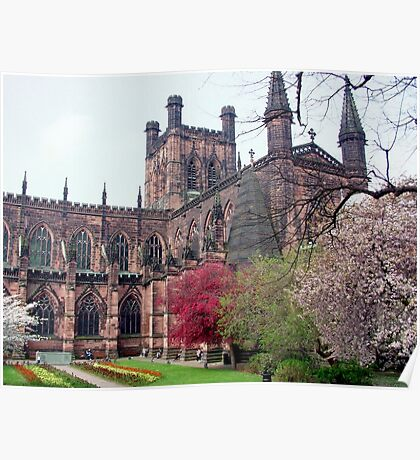 Chester Cathedral in Springtime Poster