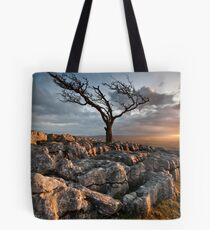 changeable Tote Bag