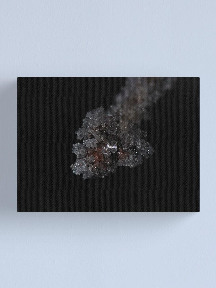 Alternate view of Ice Node Canvas Print