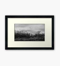 Desolate Mountain Framed Print