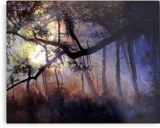 """""""Myakka River - Shadow Crossing"""" by cyberhighwaymen"""
