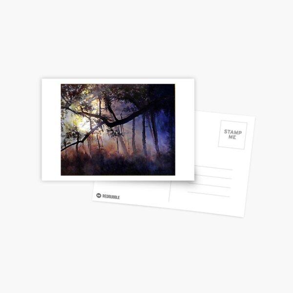 """Myakka River - Shadow Crossing"" Postcard"