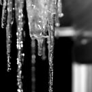 Icycle series 1  by Evette Lisle