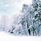 Winter Blues by Jessica Jenney