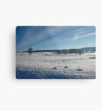 Snow Scene 1 Metal Print