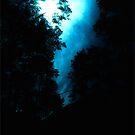 Aspen Trail Sky by DZINE