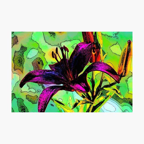 Lily design Photographic Print