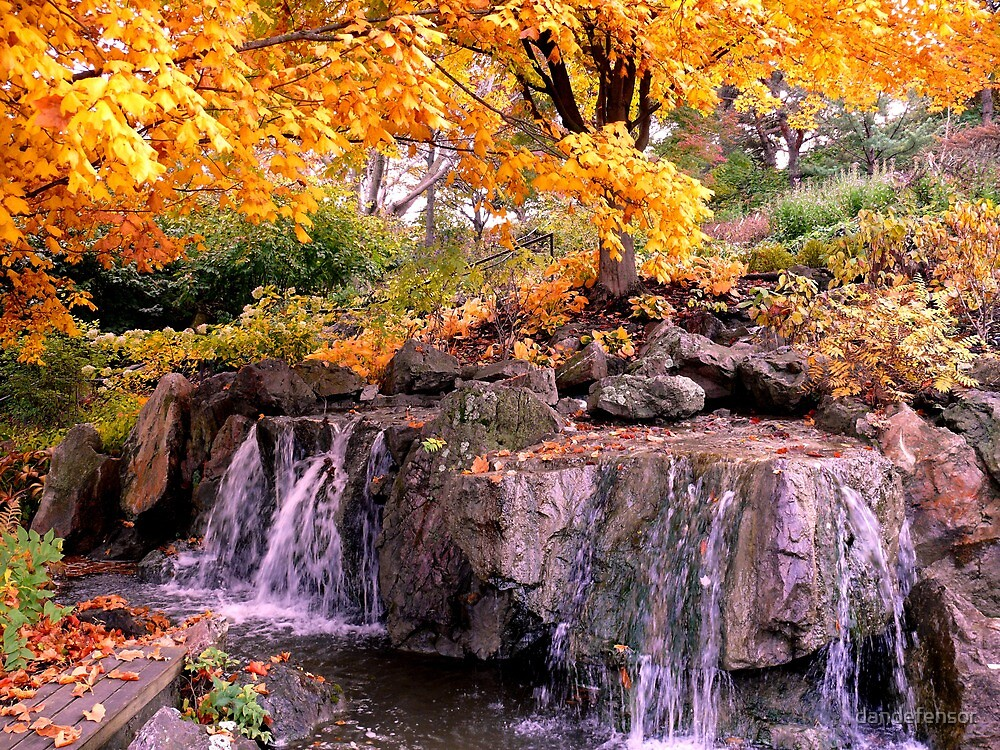 Waterfall @ Chicago Botanic Garden by dandefensor