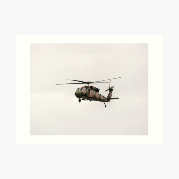 Black Hawk  Art Print