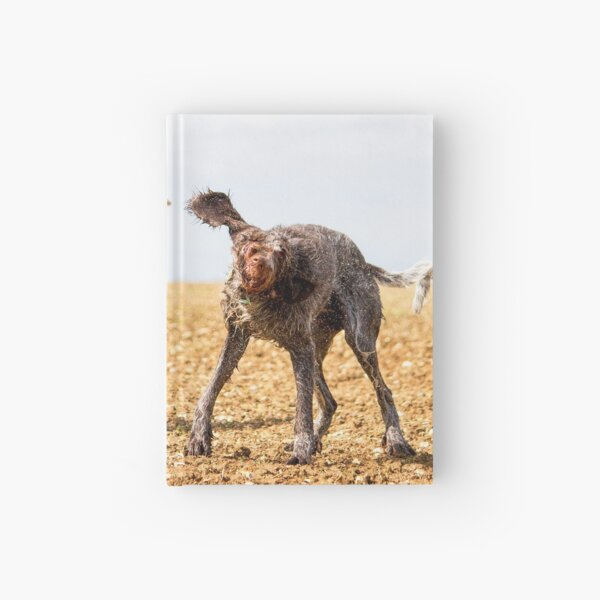 Italian Spinone Dogs Luca and Nico Hardcover Journal