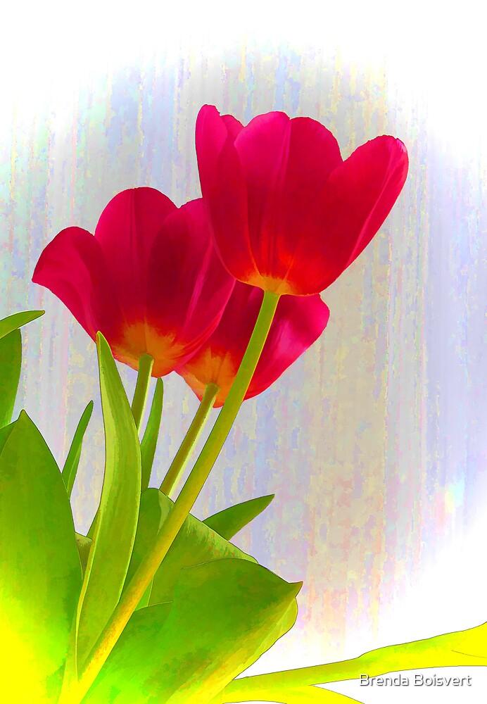Dreaming of Spring by Brenda Boisvert