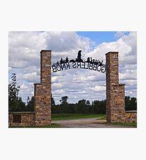 Gateway to Groundhog land Photographic Print