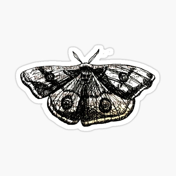 STRANGE THE DREAMER MOTH ART Sticker