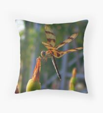 Dragonfly at Six Flags Great Adventure Throw Pillow
