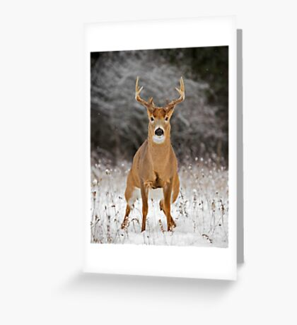 On your Mark... Greeting Card