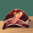 Chinese Box Turtle by Tami Wicinas