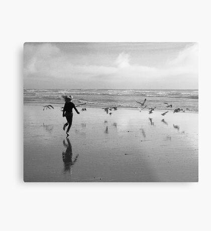 Bird Run Metal Print