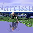 NARCISSUS by Ann Morgan