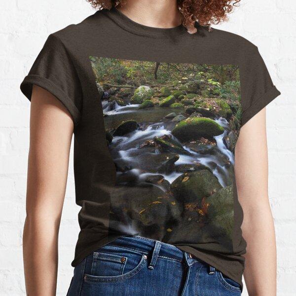 Hidden Away Classic T-Shirt