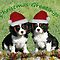 Double Christmas Things/Doppia Cose Natale