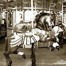 Carousel 53 by Joanne Mariol