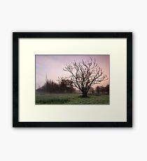 Salisbury water meadows Framed Print