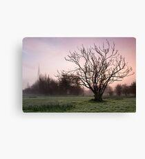 Salisbury water meadows Canvas Print