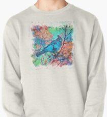 The Atlas of Dreams - Color Plate 233 Pullover Sweatshirt