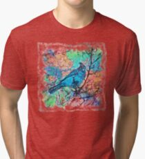 The Atlas of Dreams - Color Plate 233 Tri-blend T-Shirt