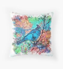 The Atlas of Dreams - Color Plate 233 Throw Pillow