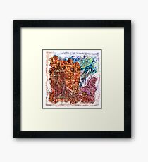 The Atlas of Dreams - Color Plate 235 Framed Print