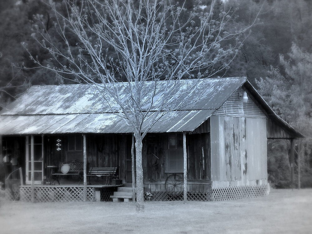 Winter Chill by Dawn di Donato