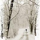Winter Walk by Jessica Jenney