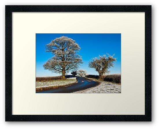 Winter by Trevor Kersley