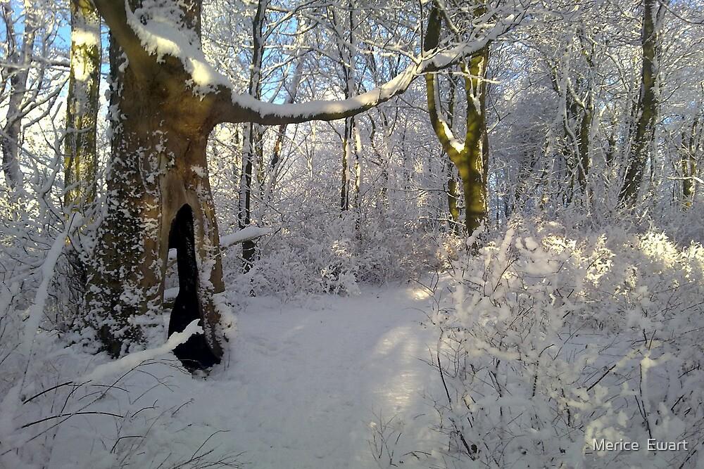 """Orchestral snowstorm"" by Merice  Ewart-Marshall LFA"