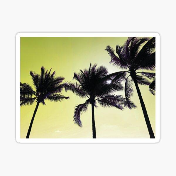 Palm Tree Paradise by Jerald Simon (Music Motivation) Sticker