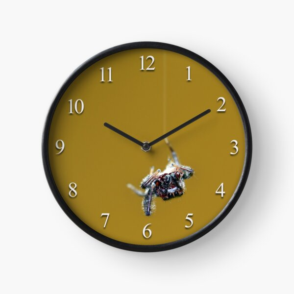 Along Came a Spider ... Clock