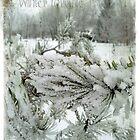 Winter lovable.... by Olga