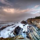 Shore Acres Northern View by Avena Singh