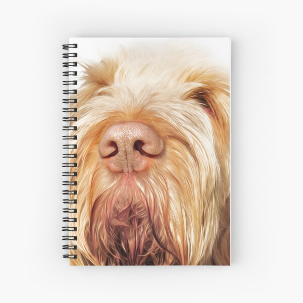 Orange and White Italian Spinone Dog Head Shot Spiral Notebook