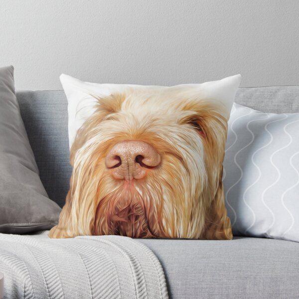 Waiting for you Spinone Throw Pillow