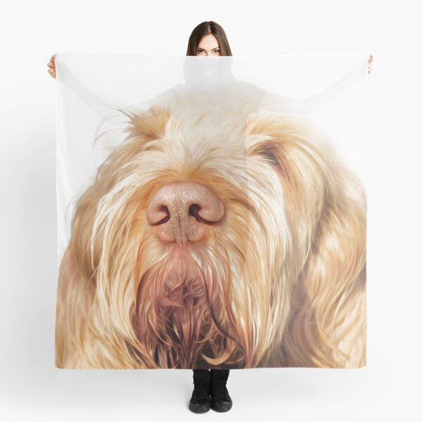 Waiting for you Spinone Scarf