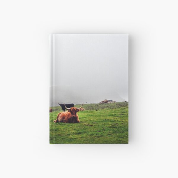 Highland cattle grazing on the misty coast of Islay, Scotland Hardcover Journal