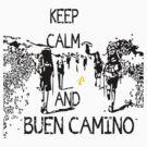 Keep calm and buen camino by cheeckymonkey