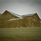 The Barn on the Hill by ericseyes