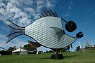 Silver Fish,Sculptures on The Edge,Australia 2015 by muz2142